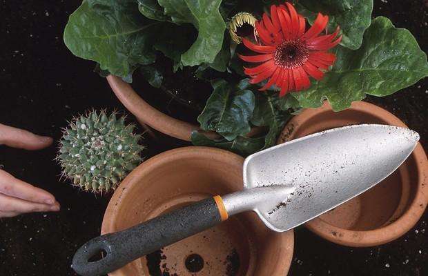 Changes to WGAN's Gardening Program